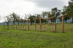 wp-001-bucher-mooshof-Littauer-Fäscht-2017-02